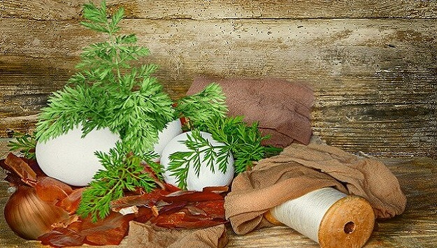 Using natural plant dyes