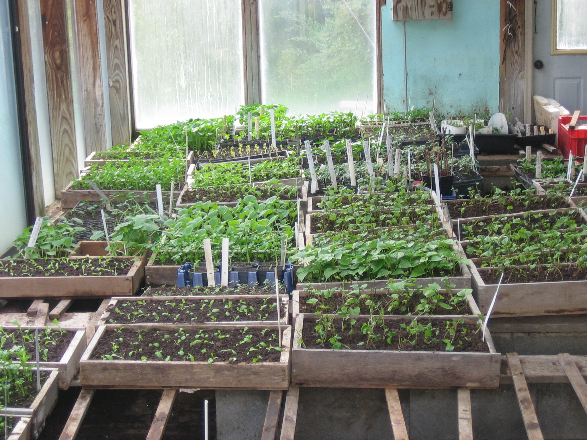 February Sustainable Market Farming