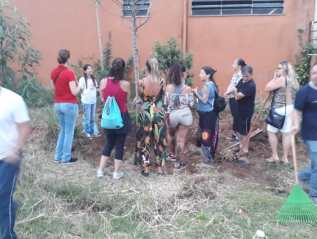Teachers, students and community engage in activities carried out by the Selected Schools in Brazil