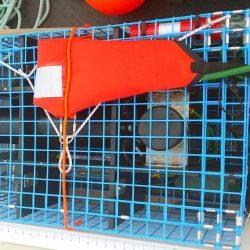 SMELTS: LobsterRaft