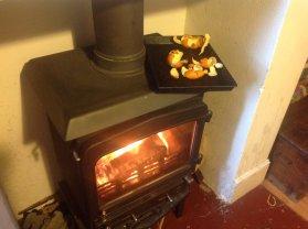 Orange peel for the fire