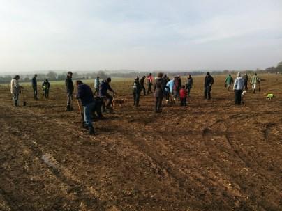 digging at Heartwood