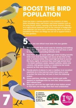7. Boost the Bird Population