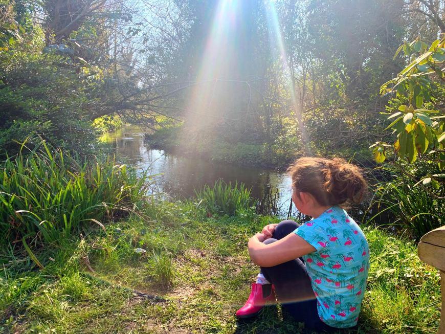 Lee Wood blog sun rays 5
