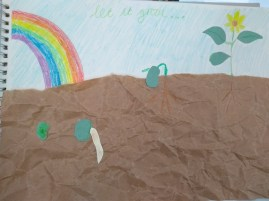 Lockdown competition - Johanna age 15 and seed art