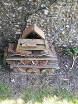 Oliver age 11 bug house