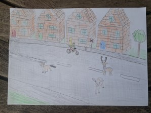 Lockdown competition - Olliver age 9 new street