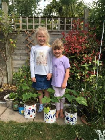 Poppy and Abby sunflowers