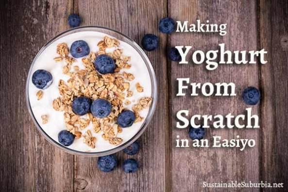Making Yogurt from scratch in an Easiyo | SustainableSuburbia.net