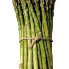 a bunch of asparagus spears, tied with a string