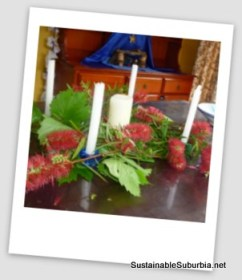 Advent candles placed in a wreath of flowering Australian bottle brush and grapevines.