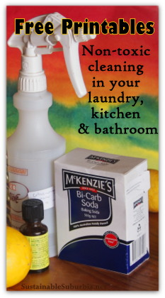 Free Printables: Non-toxic cleaning in your laundry, kitchen & bathroom