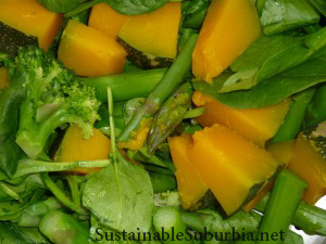 steamed vegetables - pumkin, asparagus, broccoli | SustainableSuburbia.net