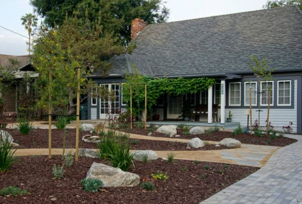 A mulched yard saves water | SustainableSuburbia.net | image by Janice Nicol
