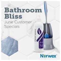 Norwex bathroom cleaner and ergonomic toilet brush. On sale June 2019.