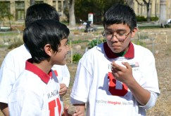 Elementary students visiting campus through the Bennion Center's Project Youth taste herbs in the Edible Campus Gardens.