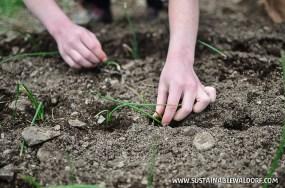 FarmTrip2015-29