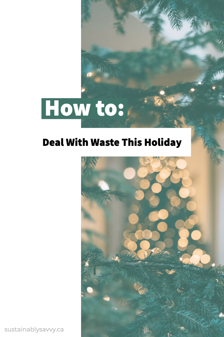 Pinterest image How to Deal with Waste This Holiday