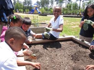 Great Learning Opportunity for Kids athenslandtrust.org