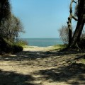 jekyll beach 2