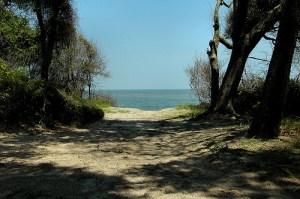 Jekyll Beach vanishingsouthernga.com