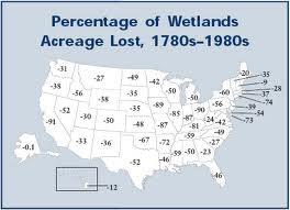 Wetlands Reductions by State (1780s-1980s) northassoc.org