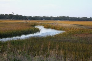 Coastal Marshlands. The King and Prince Resort on St. Simons Island is using this image to promote visiting. Ruining this environment would obviously be bad for business. blog.kingandprince.com