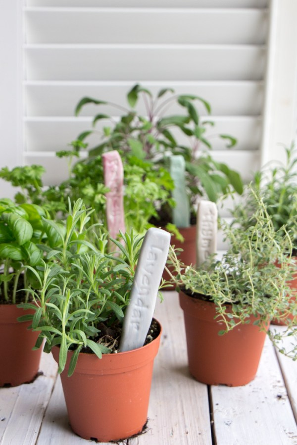 diy herb garden markers with air