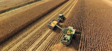 fa-industrial-monoculture-corn
