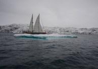 Tara,Arctic,2013