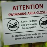 algae-blooms-warning-sign