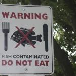 fish-toxic sign