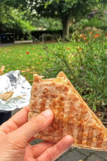 Brie and Fig Jam Toastie | Sarah Irving | Susty Meals