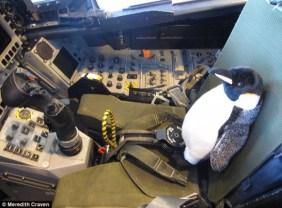 mumbles-pilotando