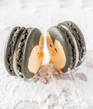 macarrón pingüino