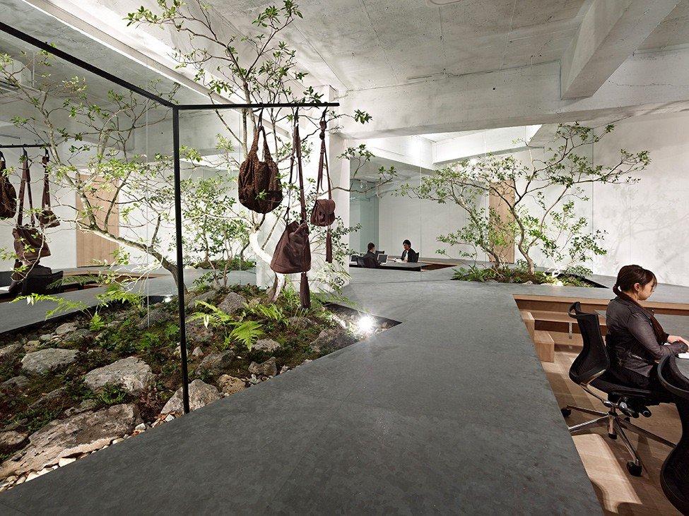 desain kantor nuansa alam - 5 Desain Kantor Terbaik yang Pernah Ada
