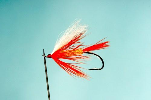 ภาพเหยื่อตกปลา ถ่ายด้วยเลนส์มาโคร ให้กับบริษัทแห่งหนึ่งของอเมริกา