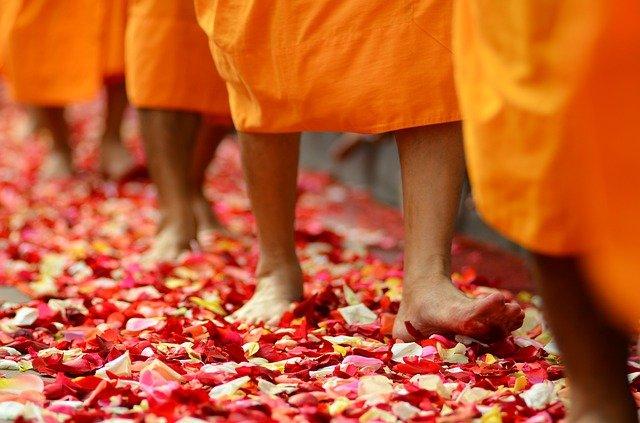 Photo of barefoot Buddhist monks walking along path of rose petals