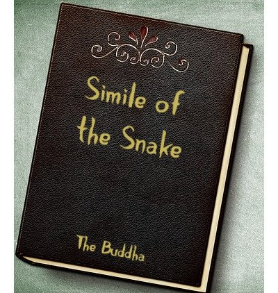Leather book Cover with The Simile of the Snake title