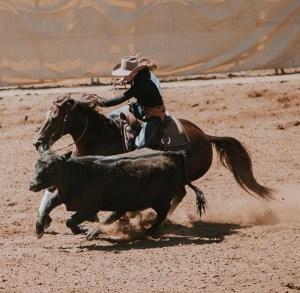 suu horsemanship