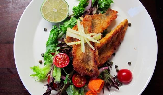 Salaatti nro 96 – Ahvensalaatti marinoidulla fenkolilla