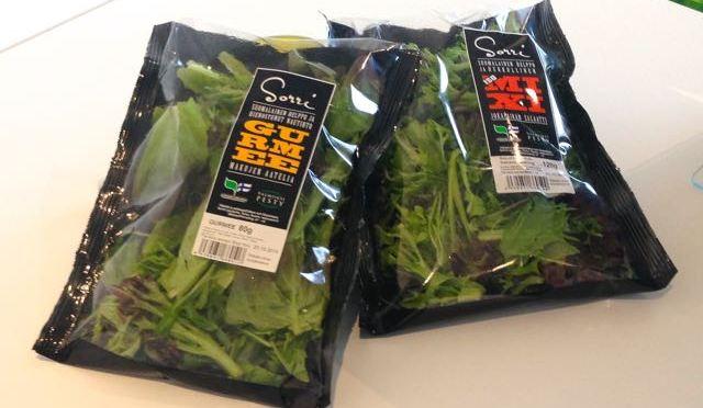 Salaatti nro 97 – á la Peetu