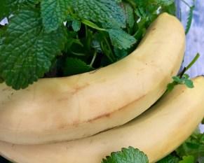 banaanit