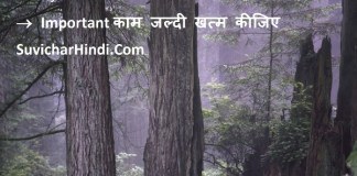 Important Thoughts in Hindi