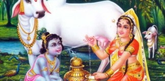 सूरदास के 11 पद अर्थ सहित - Surdas Ke Pad in Hindi With Meaning - दोहे Dohe