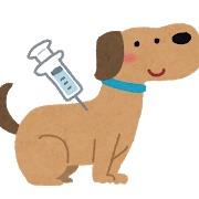 ワクチン 6 種 犬