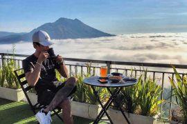 La Vista Coffee & Roastery Bali