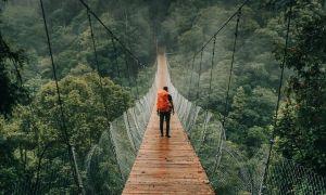 Melangkah Di Situ Gunung Suspension Bridge Sukabumi