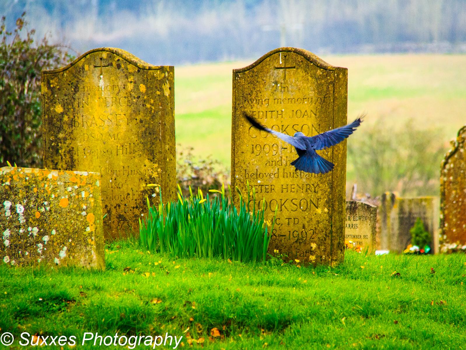 upper slaughter graveyard