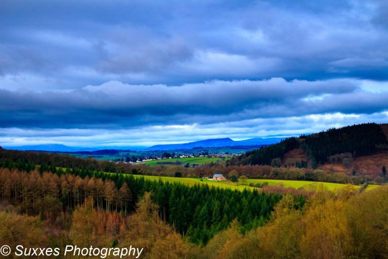 forest dean village hills